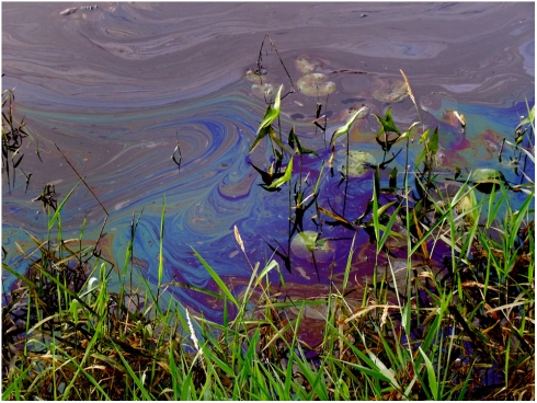 Photo4_OilSpill_1000